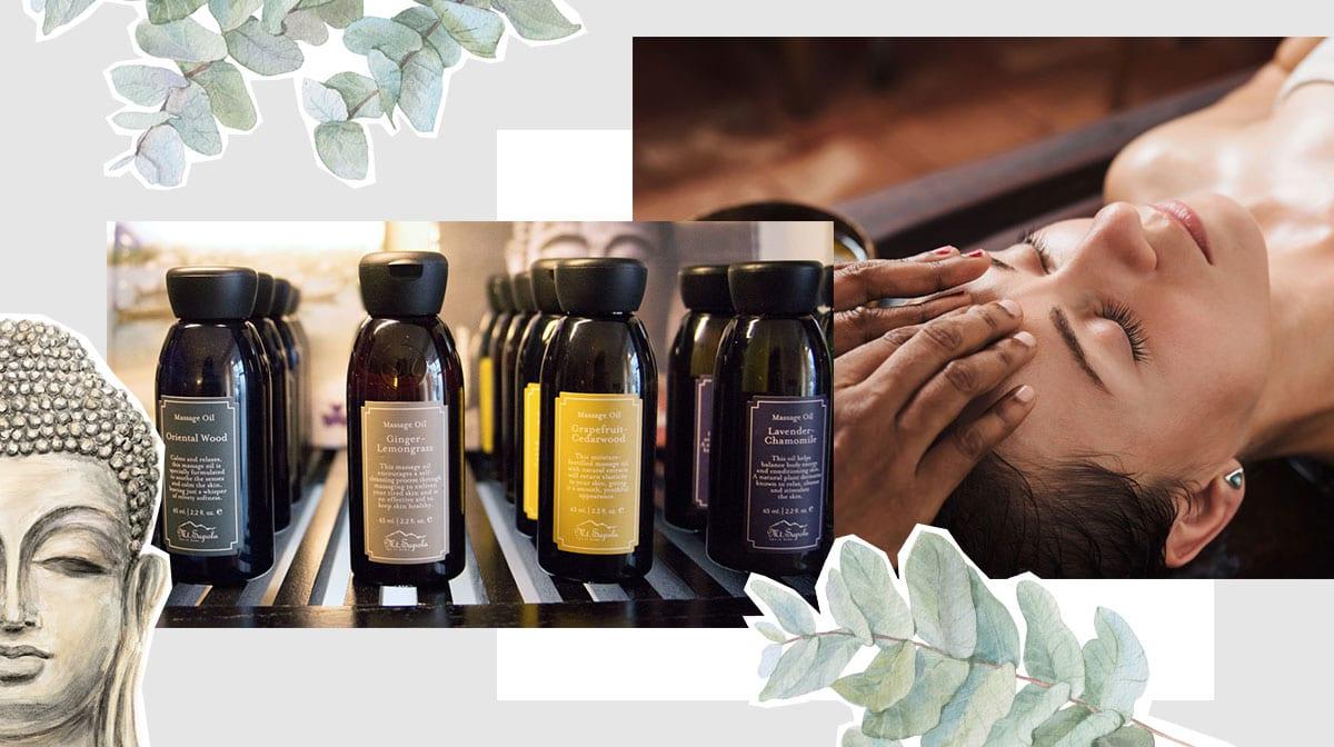 Detox mit Mt. Sapola: Diese ätherischen Öle unterstützen deinen Körper beim Entgiften