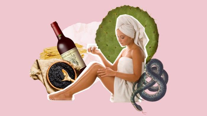 Wellness 2.0: In diesen Spas entspannst du mit Vogelkot, Schlangen und Co
