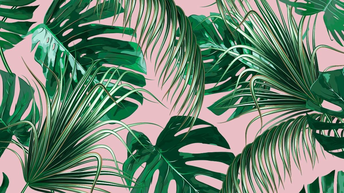 Dschungelfeeling zu Hause: Für diese Zimmerpflanzen brauchst du keinen grünen Daumen