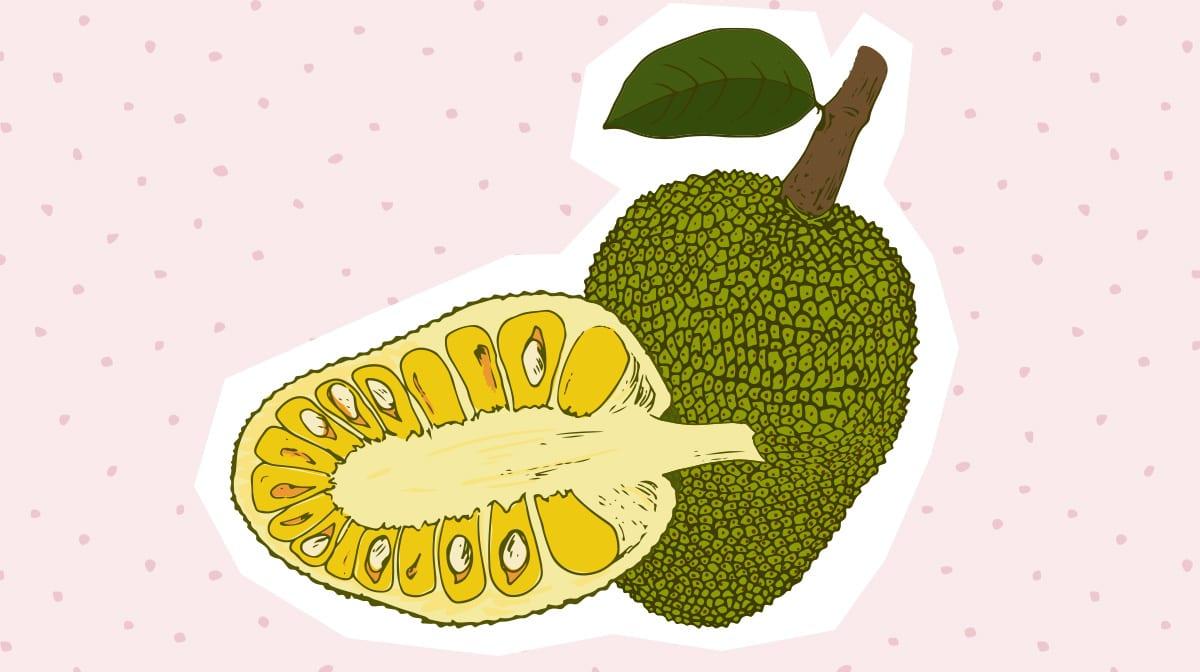 """Jackfruit – das """"Fleisch"""" vom Baum erobert unseren Beauty- und Speiseplan"""