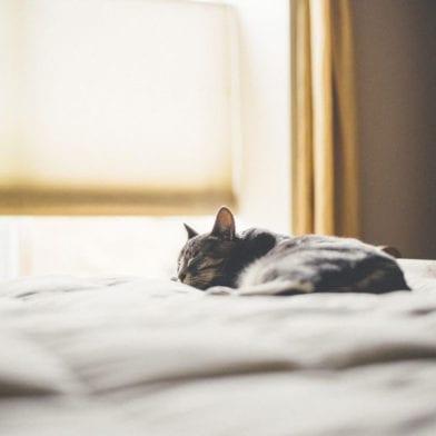 Conseils pour un beauty sleep réussi