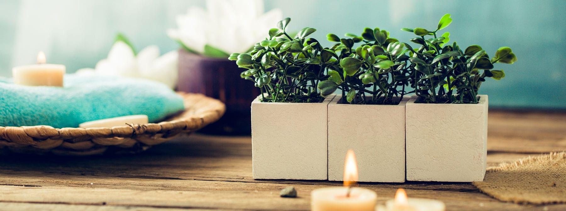 お部屋を癒しの空間に…プレゼントにも最適なリラクゼーショングッズ