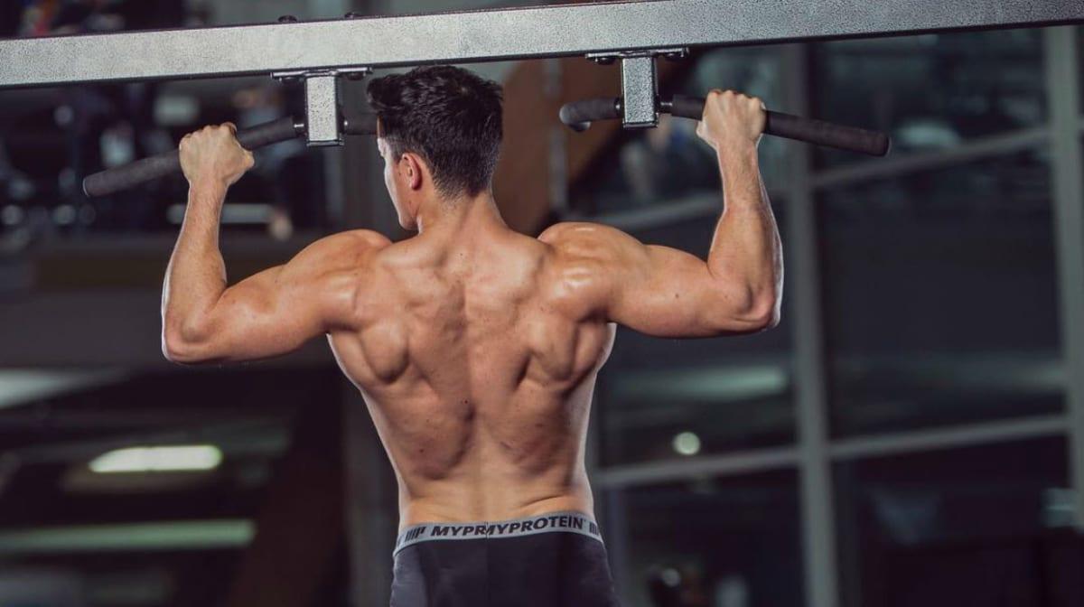 如何练出发达的斜方肌 | 构造和训练方法!
