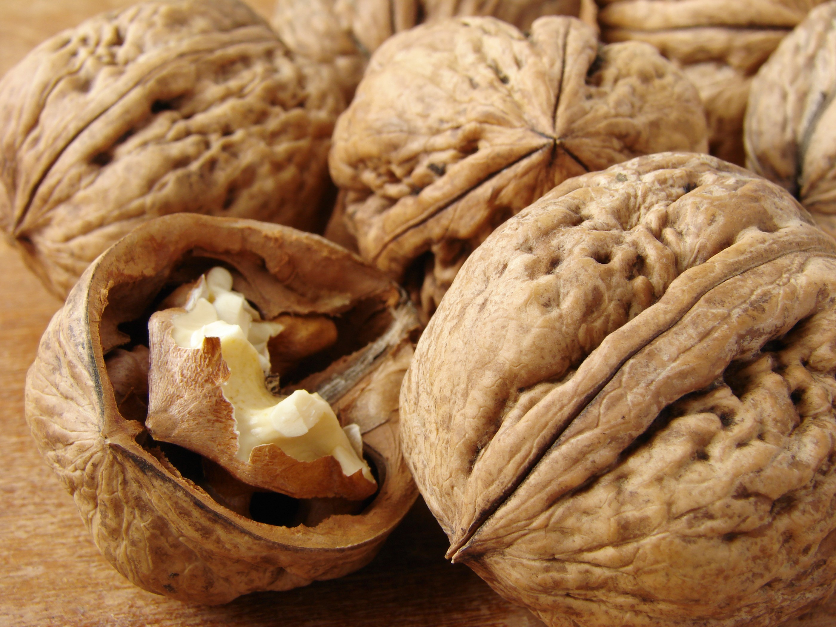 Walnuts in their shell