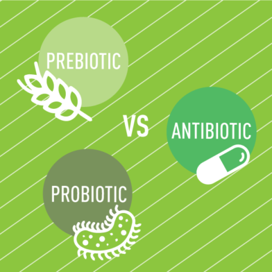 The Battle of the Biotics: Pre, Pro, and Antibiotic