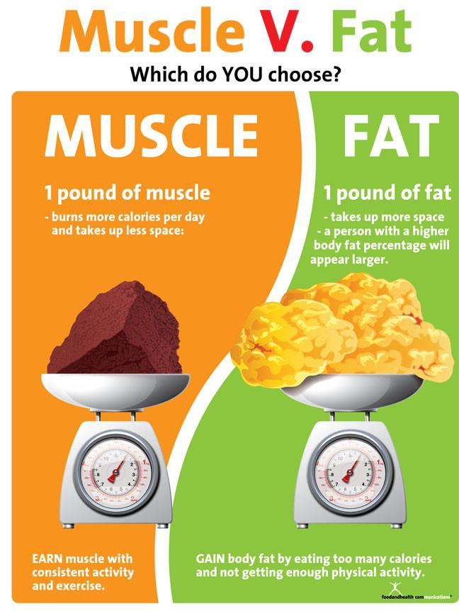 fat muscle weigh same