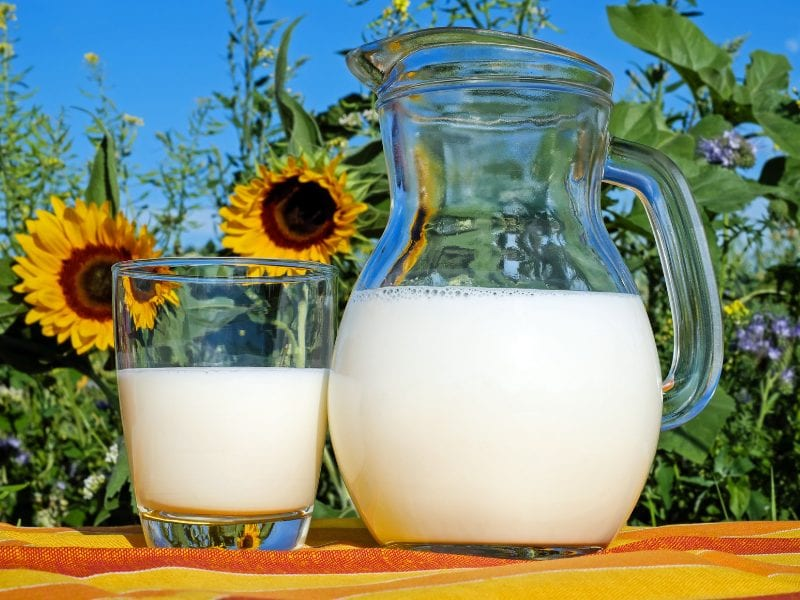A pitcher of milk next to some sunflowers