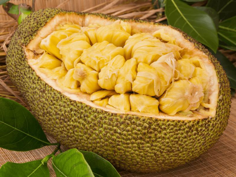 A jackfruit