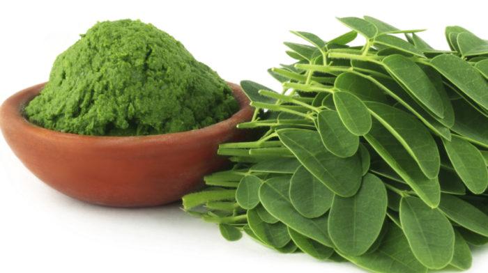 Moringa – Czym jest Herbata Moringa? Jakie są jej korzyści?