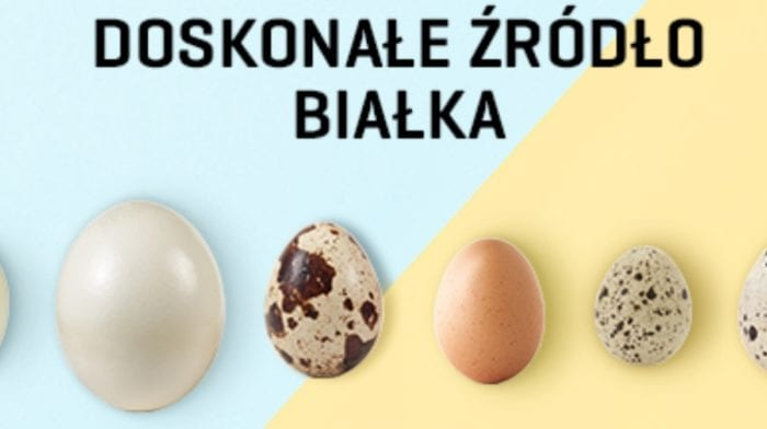 Jaja – doskonałe źródło białka | Jedz jaka na zdrowie | Źródło witamin
