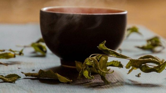 Zielona Herbata – Korzyści, wady, czym jest?