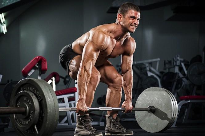 Vplyv telesnej stavby na cvičenie – spodná časť tela