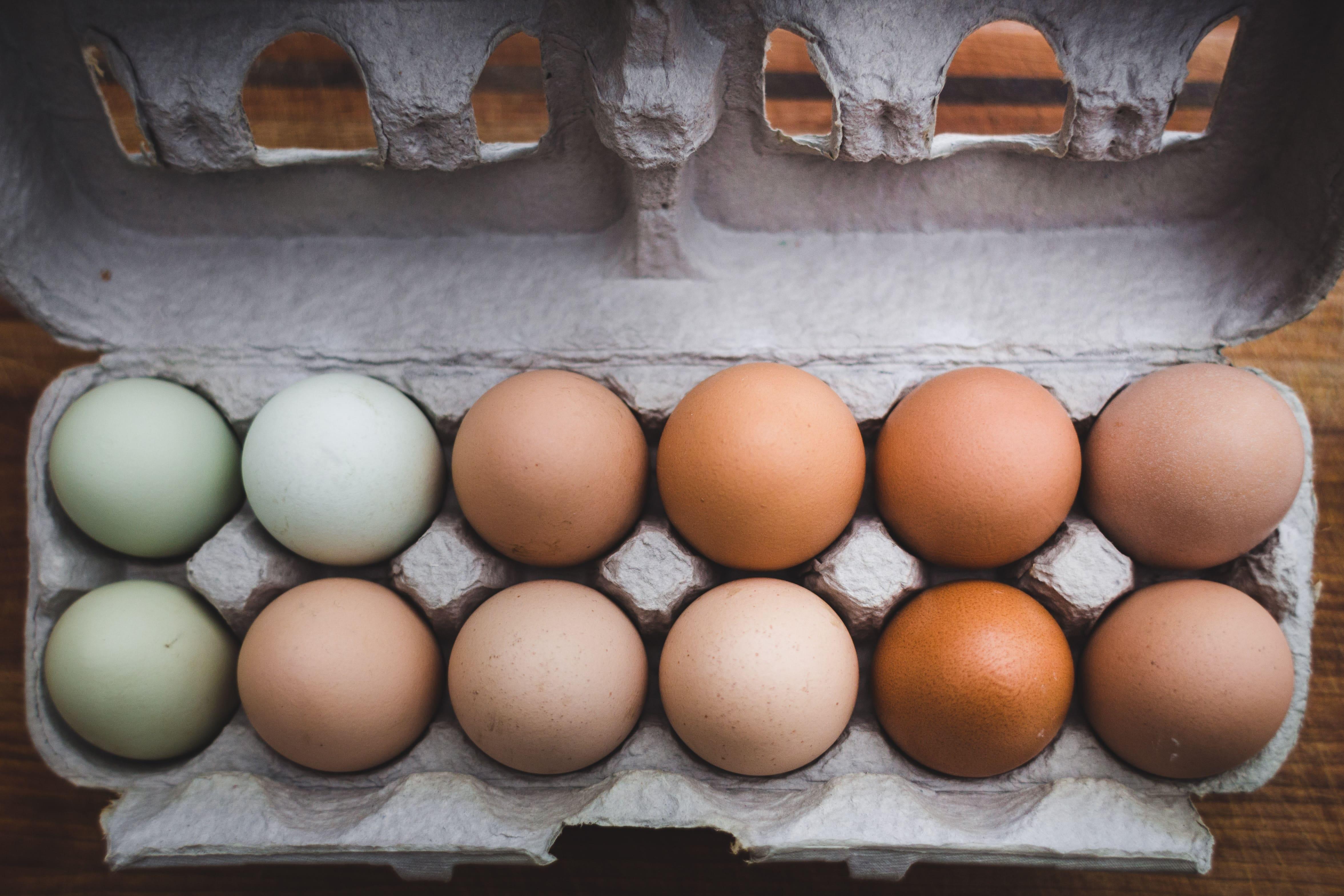 Kruhový tréning a výživa - vajcia