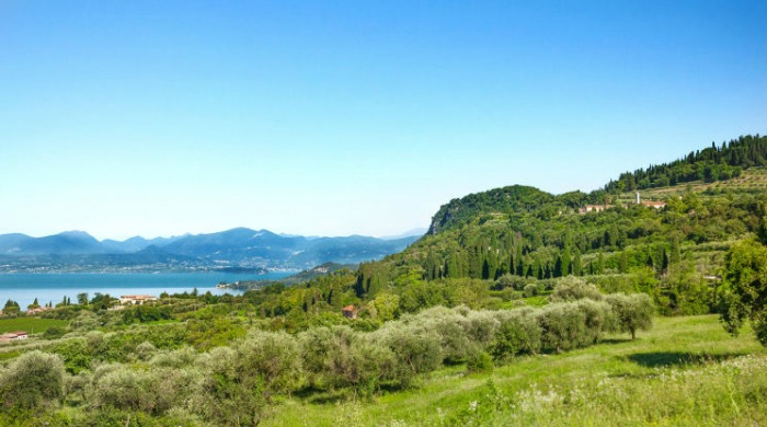 Prati Palai, Lake Garda: A view of the green hills and trees with Lake Garda in the background.