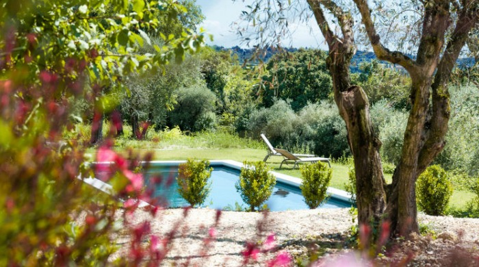 Prati Palai, Lake Garda: The pool which is tucked away amongst trees and bushes.