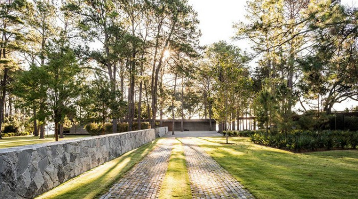 The driveway leading up to the CCR1 Residence hidden away behind tall trees.