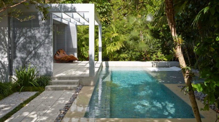The pool surrounded by palm trees at a minimal Miami beach house.