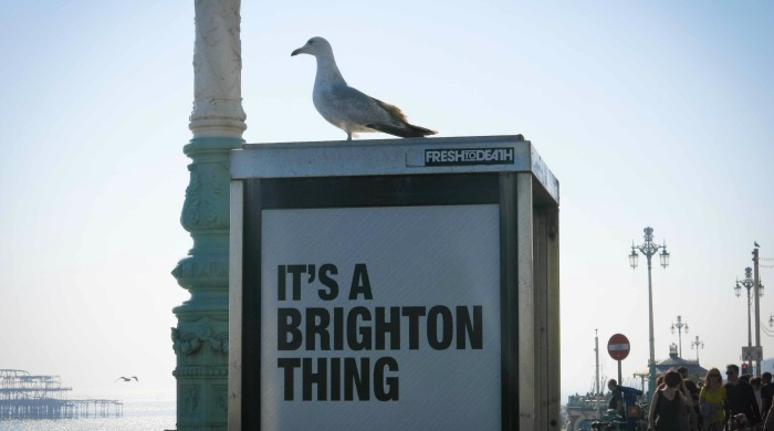 A seagull on a phonebox from the 'It's a Brighton Thing' series by Azzurra Biagi.