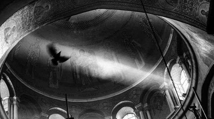 A bird flying in a cathedral in black and white by Guy Cohen.