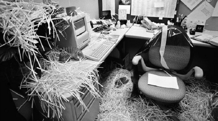 An office cubicle covered in shredded paper by Doug Menuez.