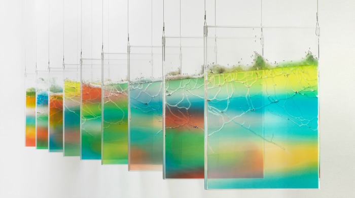 Colourful gel ant farms suspended by Brad Troemel.