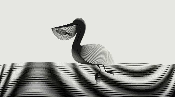 A monochrome illustration of a pelican by Andrea Minini.