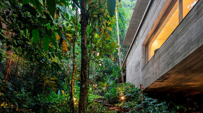 jungle house sao paulo