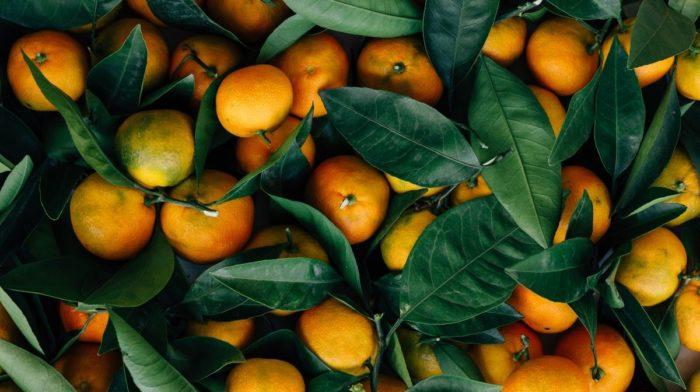 8 Best Instagram Accounts for Healthy Food